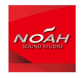 noah_logo_dw.jpg